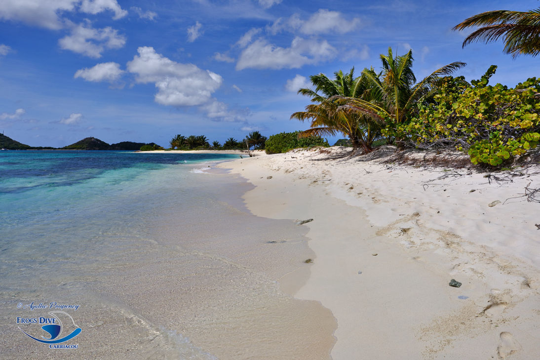 Sandy Island Carriacou, Grenada